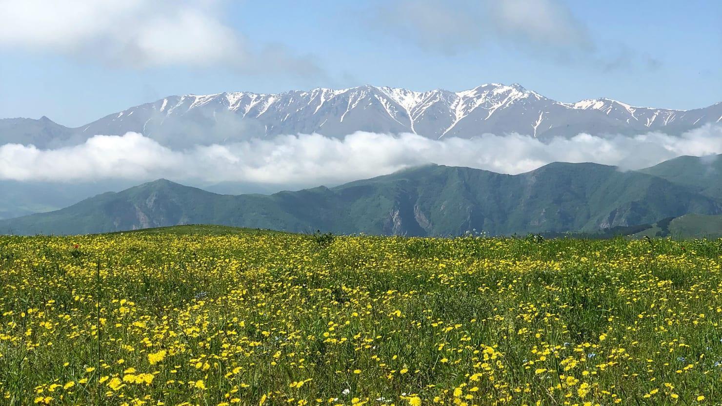 Armenia en Coche «Fly & Drive»