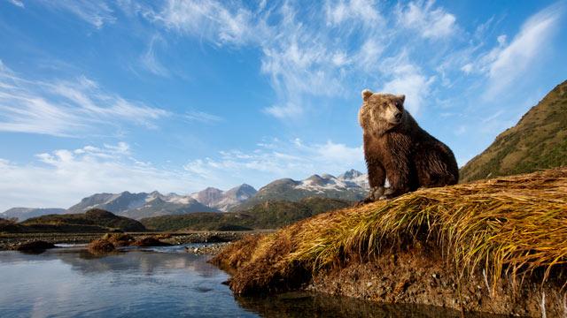 Descubriendo Alaska